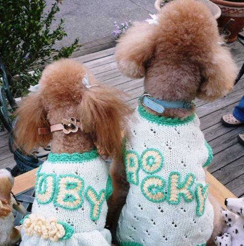 ロッキーとルビィ